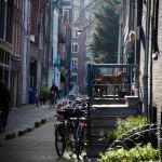 Amsterdam2013-29
