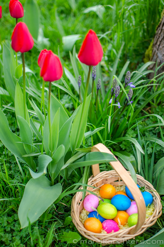 Easter2014-5