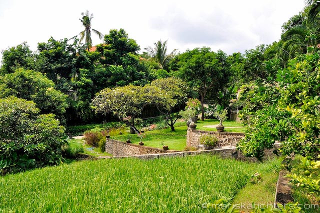 Villa Kembang Kertas Bali - Grounds and Garden