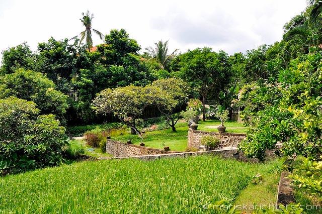 Villa Kembang Kertas Bali - Grounds and Garden