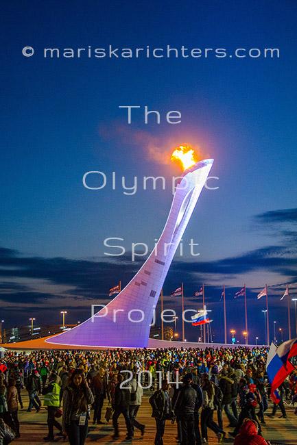 Sochi 2014 Olympic Cauldron - Print