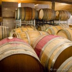 Cherry Point Vineyard - Oak Barrels
