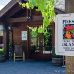 Cherry Point Vineyard - Island Fresh