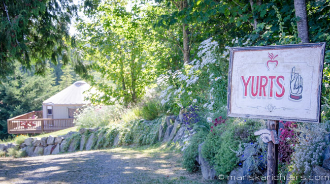 Merridale Cidery - Yurts