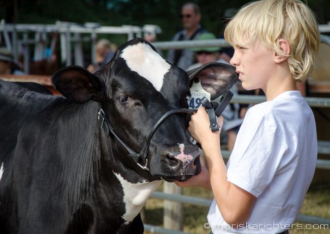 Cobble Hill Fair 2014-34