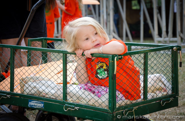 Cobble Hill Fair 2014-4