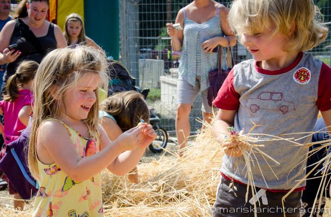 Cobble Hill Fair 2014-44