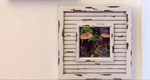 Mushroom Wall Art