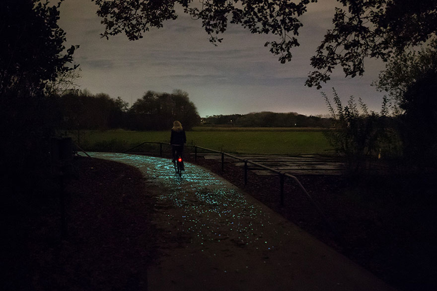 Van Gogh Roosengaarde Glowing Bike Path