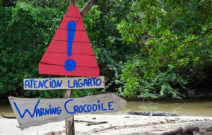 Warning Crocodile