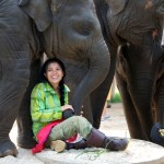 Lek Chailert at Elephant Nature Park, Thailand