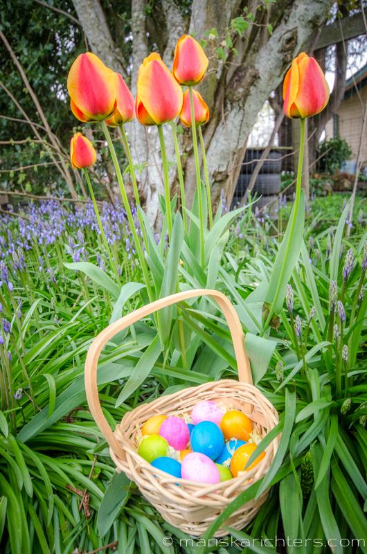 Easter2014-12