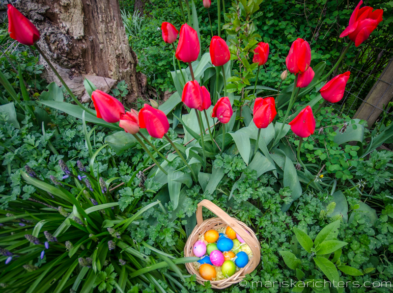 Easter2014-14