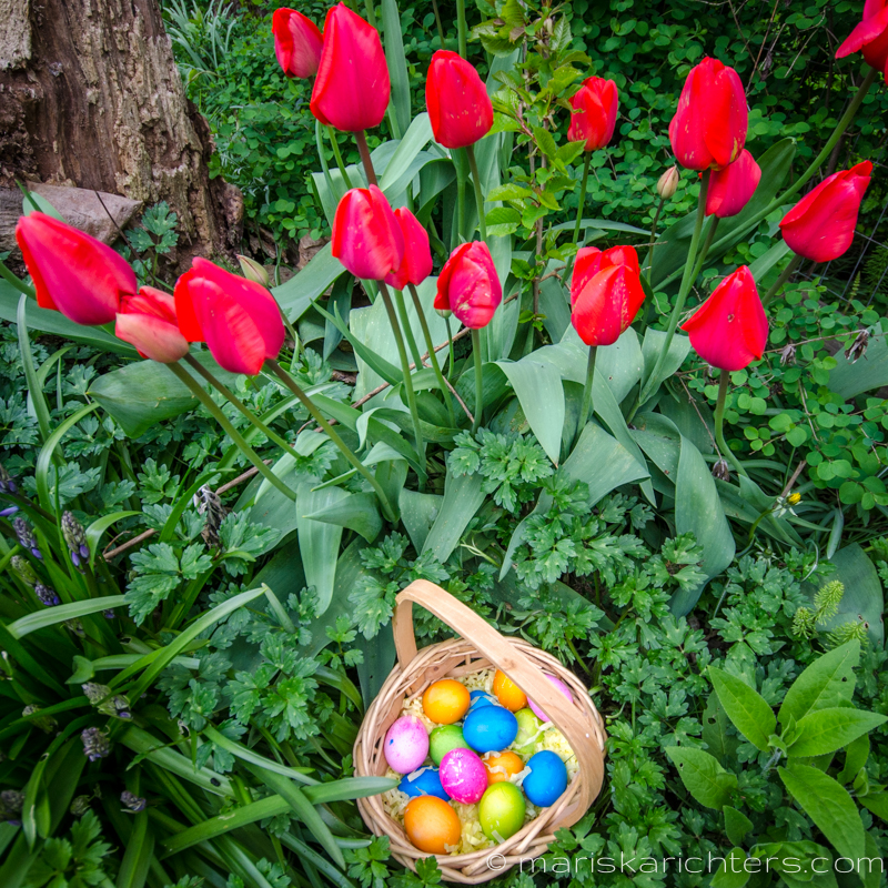 Easter2014-15