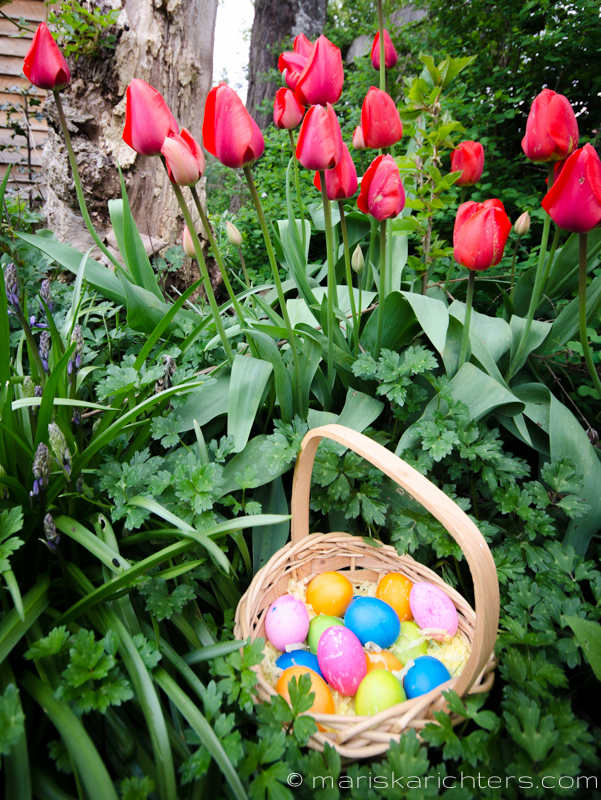Easter2014-17