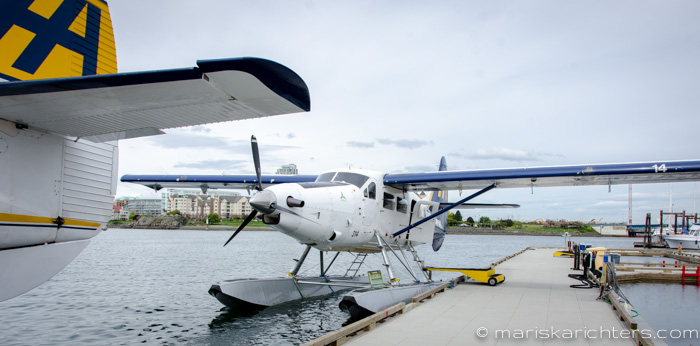 Harbour Air Scenic Flights