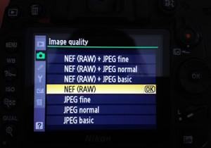 Camera RAW Setting